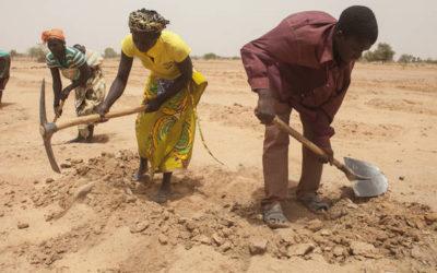UE e FAO intensificano gli sforzi per rafforzare la resilienza alle crisi alimentari