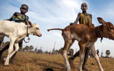 اليوم العالمي لمكافحة عمل الأطفال 2020: منع عمل الأطفال في الزراعة خلال أزمة كوفيد-19